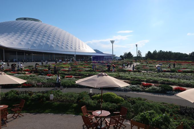 日本最大級の大花壇「花の谷ゾーン」と「維新体験館」