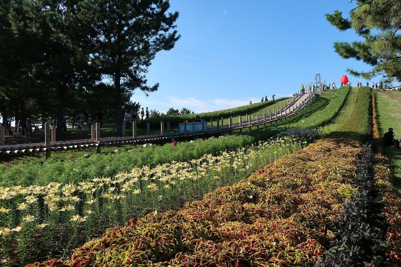 森のアドベンチャー「山の外遊びゾーン」、休憩スポット「森のピクニックゾーン」