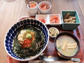 福太郎天神テルラ店の明太子食べ放題カフェがお得!めんべいも種類豊富