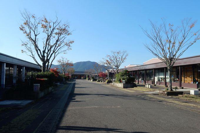 有田焼の卸団地「アリタセラ」は器巡りに便利