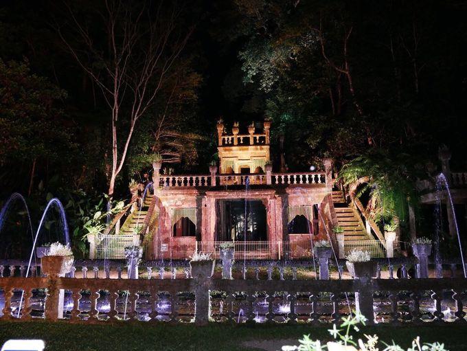 6.パロネラパーク&神秘の土ボタルと聖堂の樹観賞ツアー