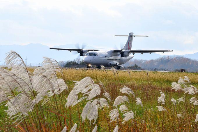 滑走路の横から離陸する飛行機、迫力満点!