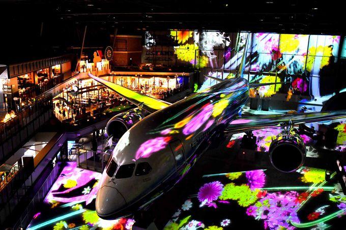 7.FLIGHT OF DREAMS/常滑市