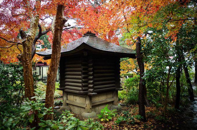 庭が素敵なギャラリー「杜のアトリエ黎明」