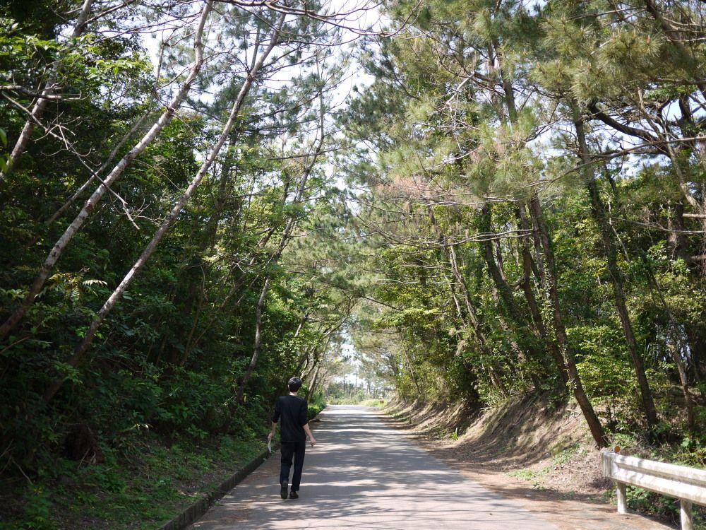 久米島のミステリーゾーン「おばけ坂」