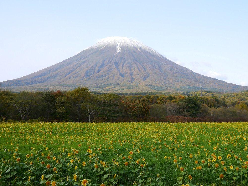 女性のパワースポット北海道・羊蹄山!女性らしさを高め恋愛成熟を叶えよう!