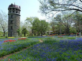 春に訪れたい北海道のおすすめ観光スポット10選 フォトジェニックな春景色!