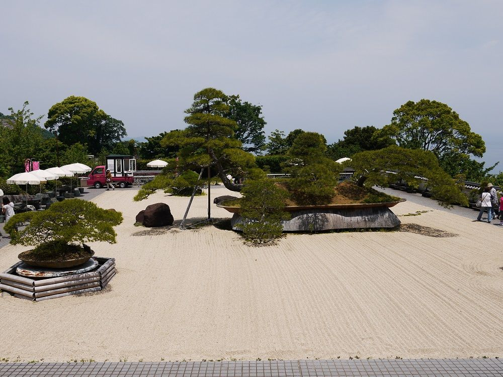 ビックな盆栽にびっくり!世界最大の盆栽がある日本庭園