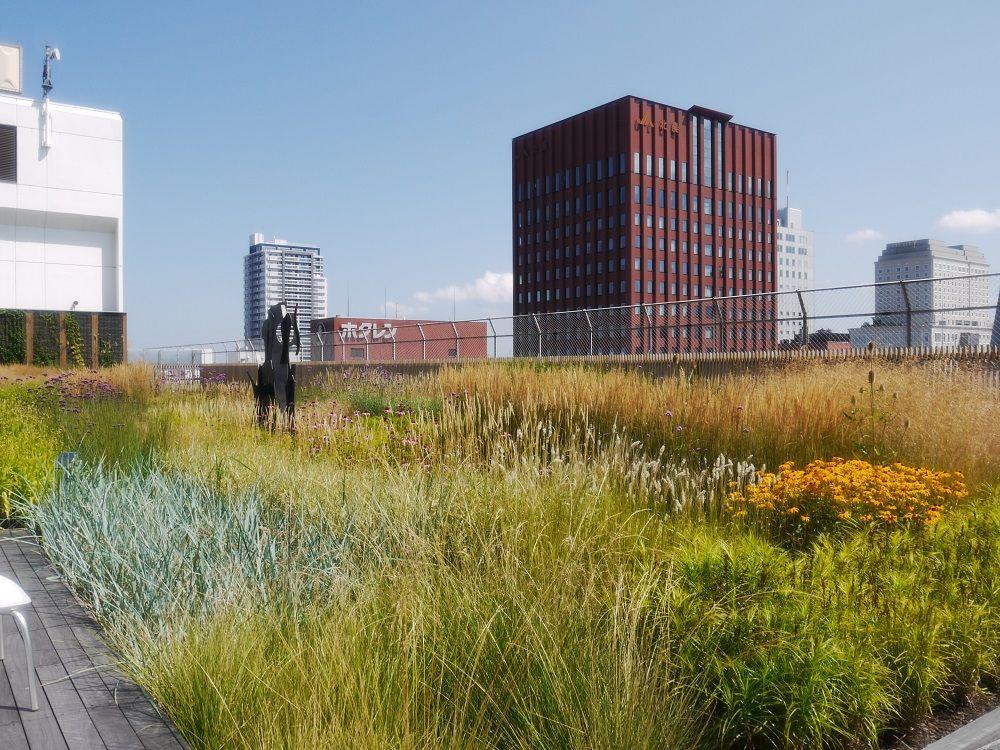 札幌駅に天空の庭!有名デザイナーが手がけた「そらのガーデン」