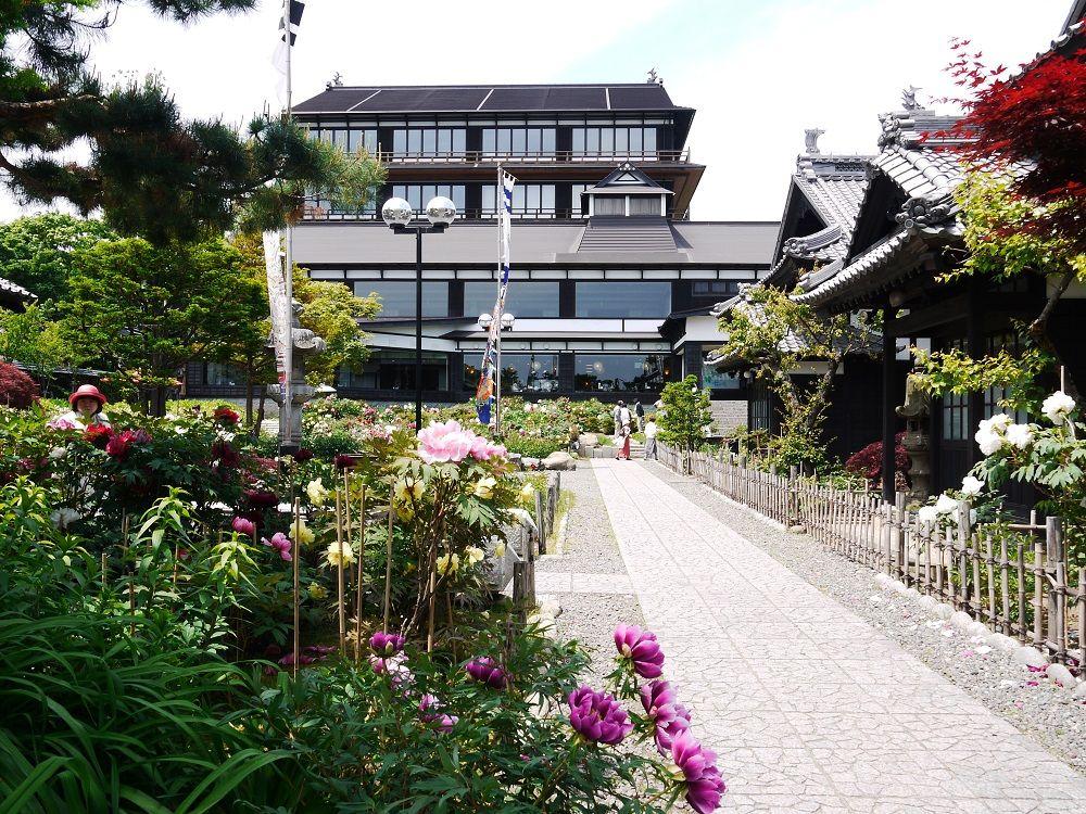 庭園に咲く大輪の花々「小樽貴賓館」牡丹・芍薬まつりへ行こう!
