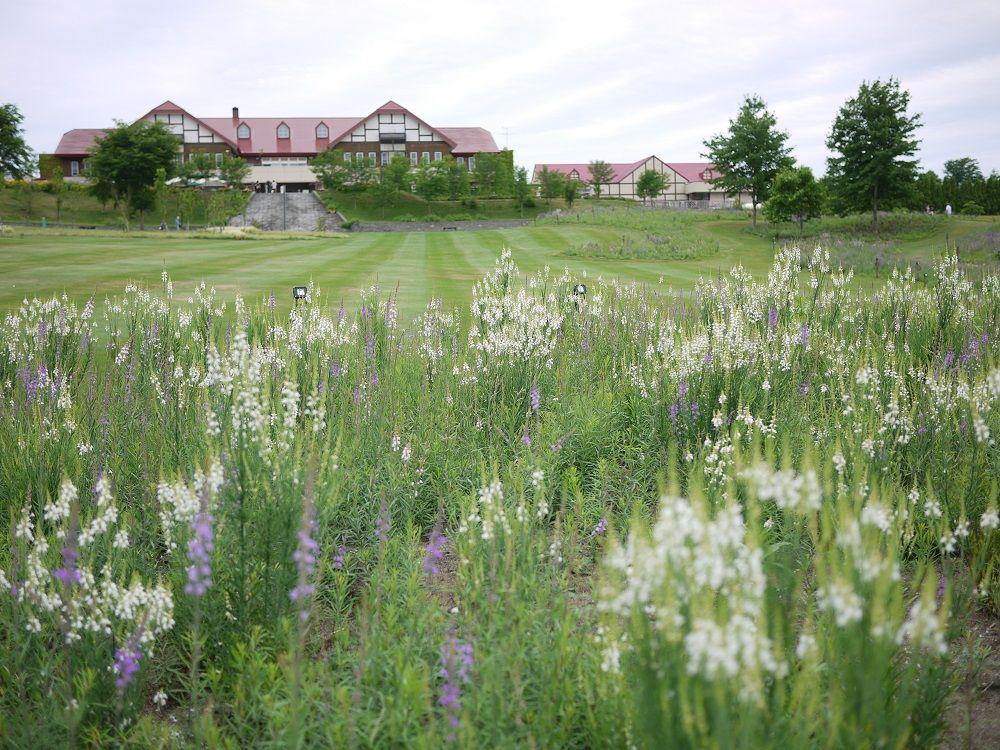英国風庭園「ゆにガーデン」と「102万本のリナリアの丘」