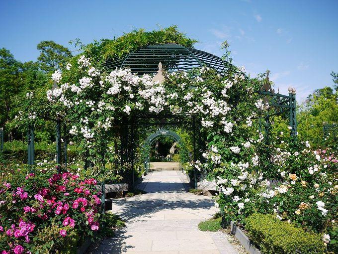 10ヘクタールの大庭園!えこりん村「銀河庭園」のご紹介