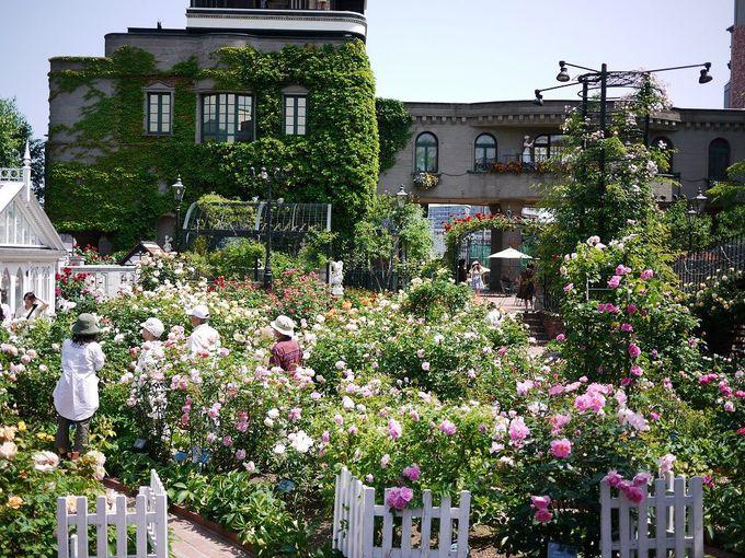 白い恋人パークの中庭はお姫様気分を味わえる異国的空間