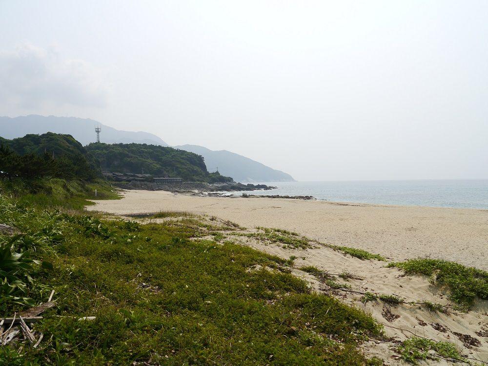 ウミガメの産卵地は景観も楽しめる美しいビーチ