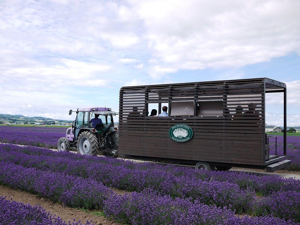 ラベンダーバスに乗ってお花畑を真ん中から楽しもう!