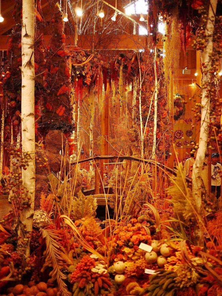 建物の中は北海道の秋景色「ドライフラワーの舎」