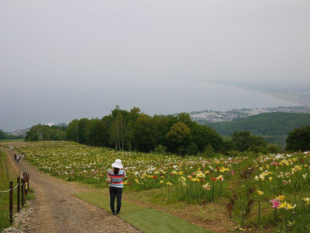 「オーンズ春香山ゆり園」は日本海が一望できる絶景スポット