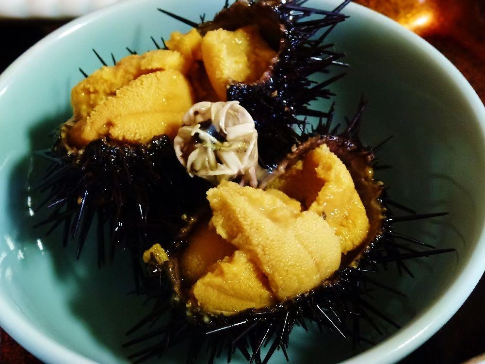 奥尻島の生ウニ