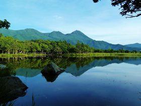 世界自然遺産の原生林に佇む神秘的な「知床五湖」を歩こう!