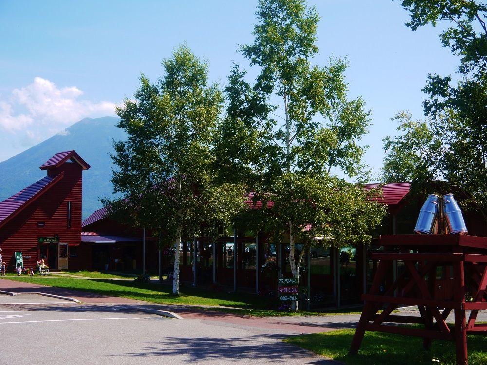 JRニセコ駅からバスで行こう「高橋牧場ニセコミルク工房」
