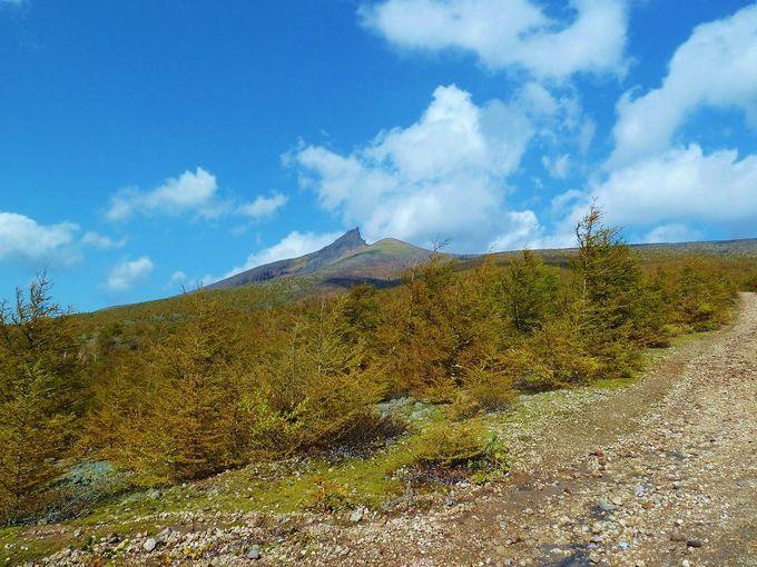 「北海道駒ケ岳」と登山について