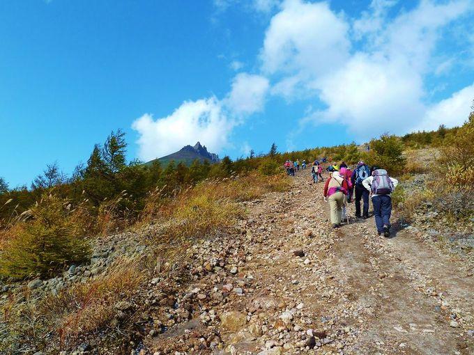 火山灰地が続く登山道