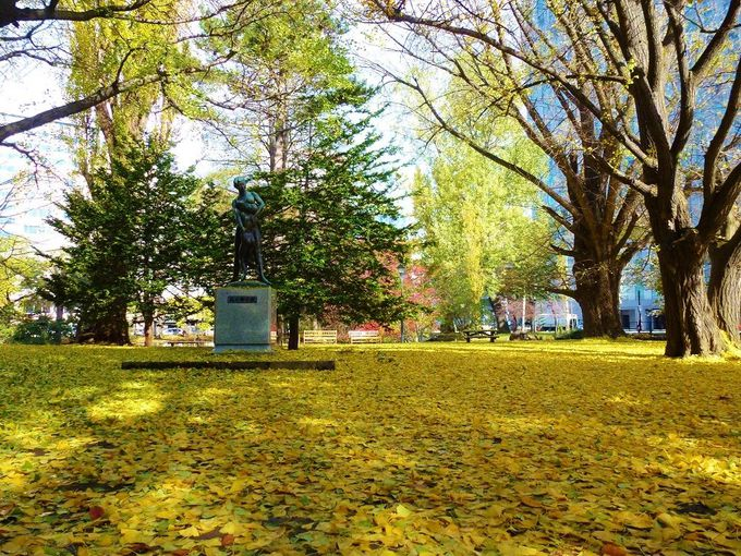 秋は美しい紅葉の名所