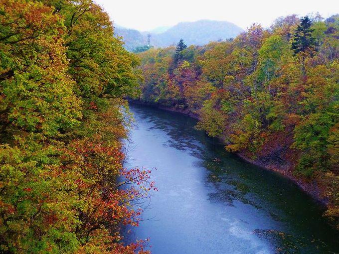百松沢林道コースから神威岳に登ろう!