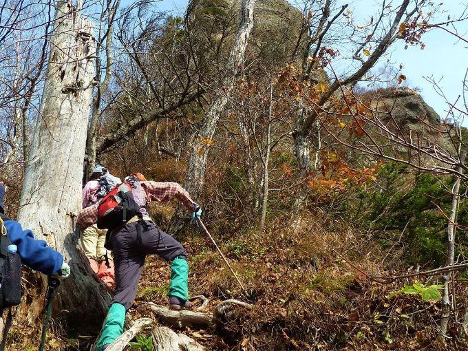 変化に富んだ登山道!