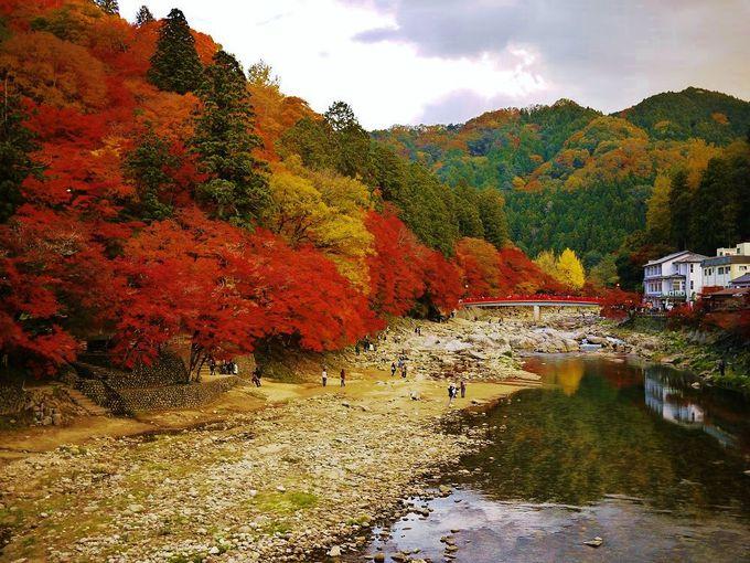 巴橋から美しい紅葉と香嵐渓のシンボル待月橋を眺めよう!