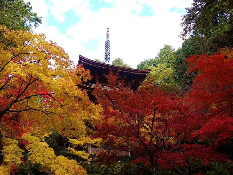 琵琶湖の東に佇む美しい絶景紅葉の名所!滋賀県「湖東三山」