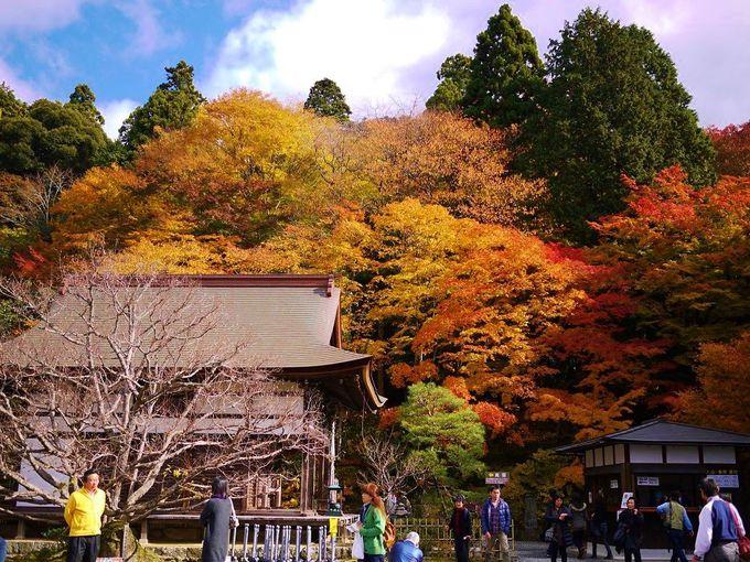 湖東三山の中でもっとも歴史ある「百済寺」