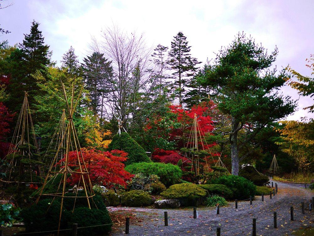 長沼町の美しい日本庭園「東庭園」をご紹介