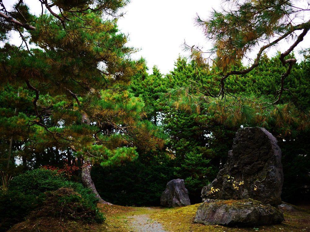緑も美しい「東庭園」