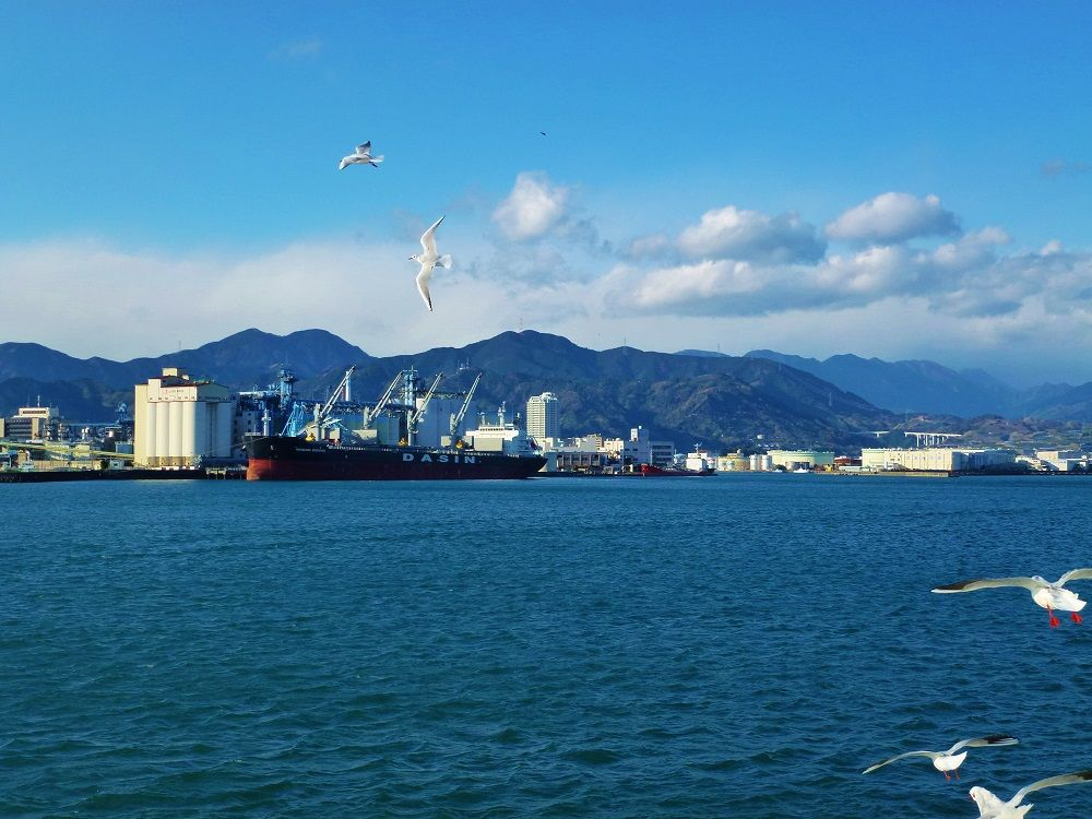 美しい風景と様々な船舶を「清水港内ベイクルーズ」で海上から楽しもう!
