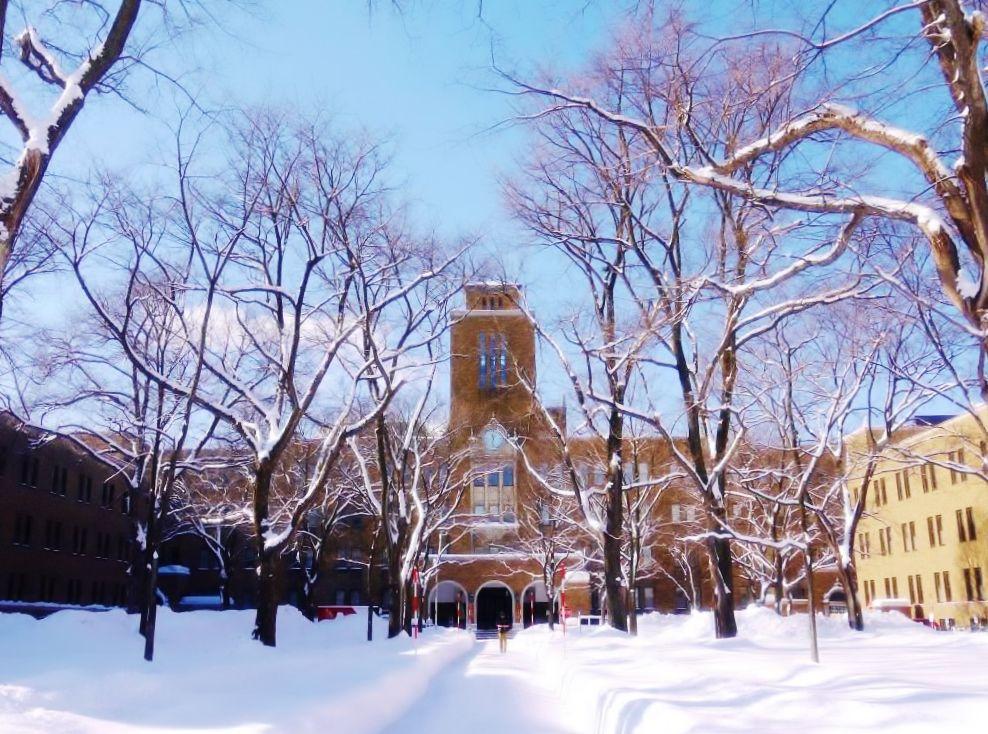 北海道大学農学部の全景を撮るのは冬が一番!