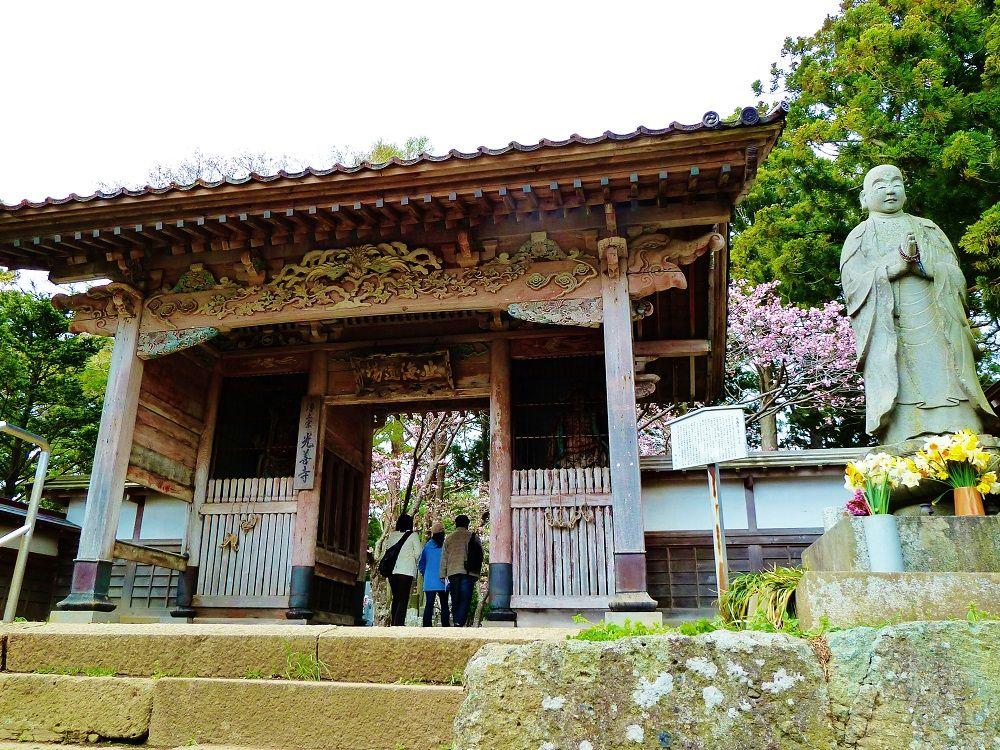 桜の精が住む美しい寺院「光善寺」