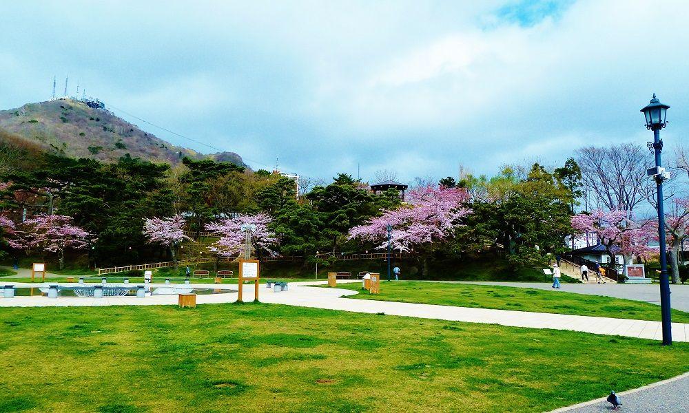 子供から大人まで楽しい!「函館公園」は国指定文化財