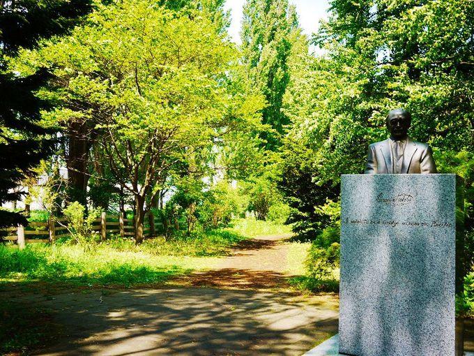 クロユリ群生地がある北海道大学「花木園」への行き方