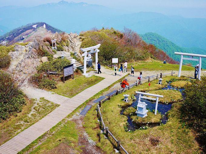 谷川岳が目の前に!「天神峠」での過ごし方
