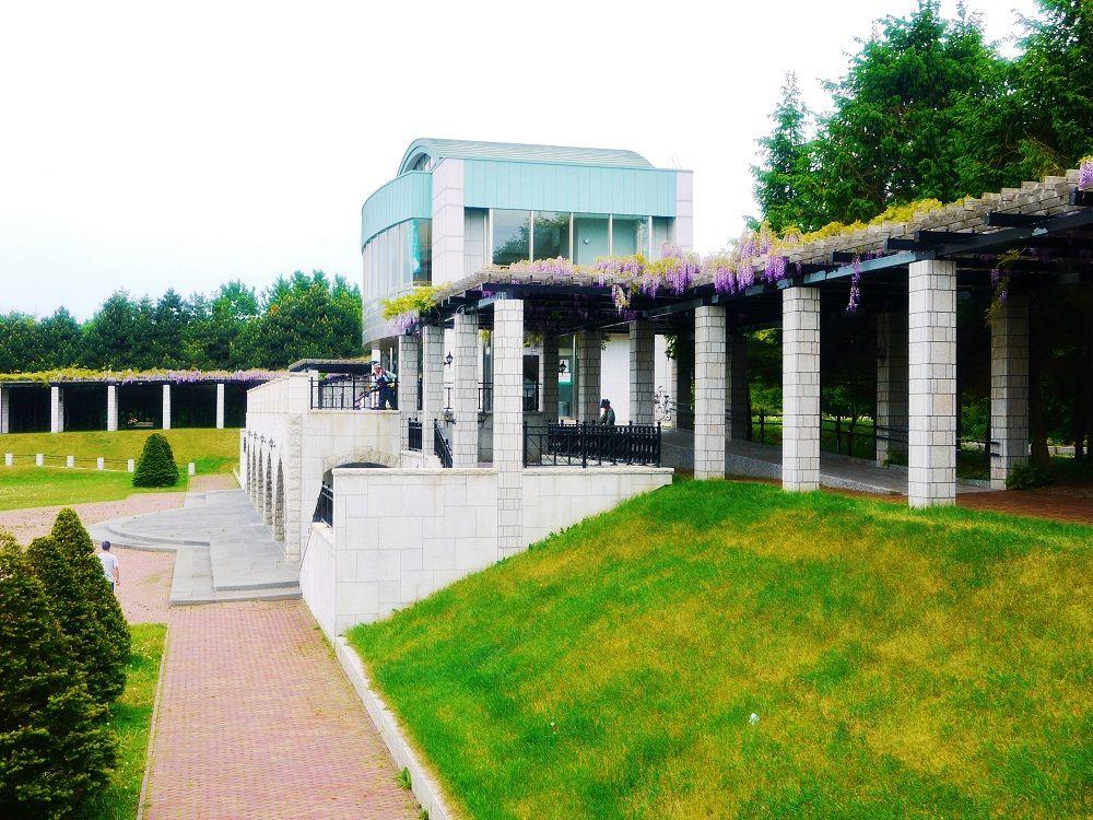 「前田森林公園」展望ラウンジを取り囲む美しき藤の回廊