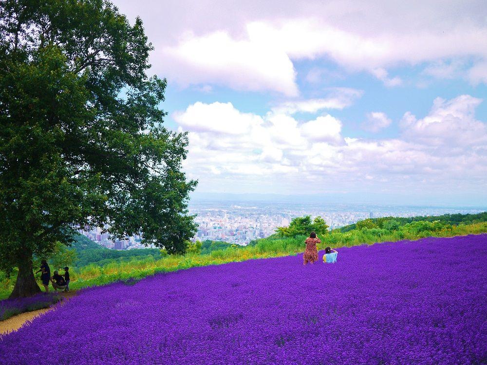札幌観光が200%楽しくなる!専門家オススメ人気旅行先30選