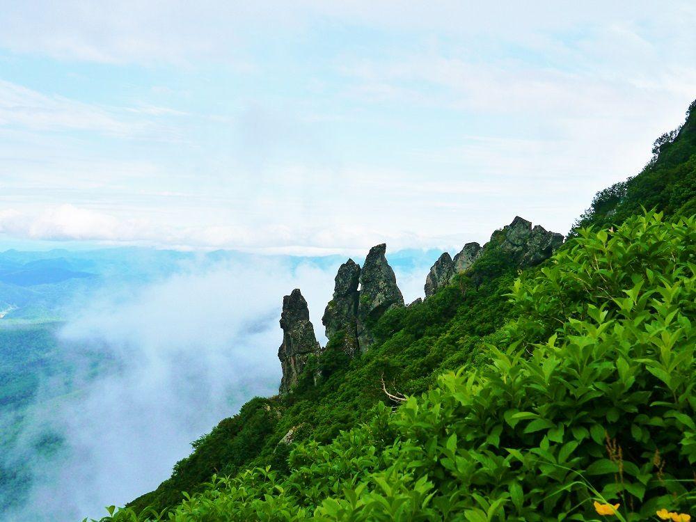 「黒岳」で感じる植物分布の移り変わり