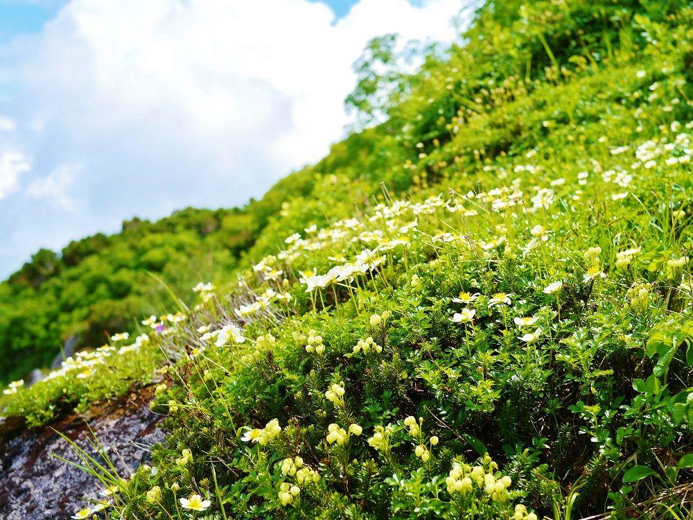 大雪山「赤岳」登山の魅力!