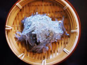漁獲量日本一!愛知県・篠島で食べたい絶品しらす料理3選