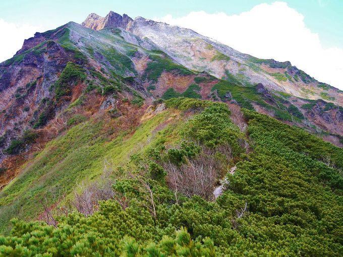 「東大雪」で絶景登山を楽しもう!