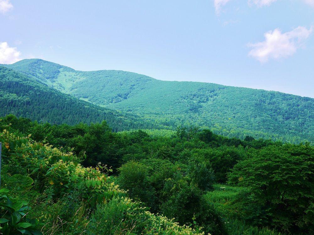 「日勝峠」ドライブの車窓から見えるのは北海道らしい山の風景