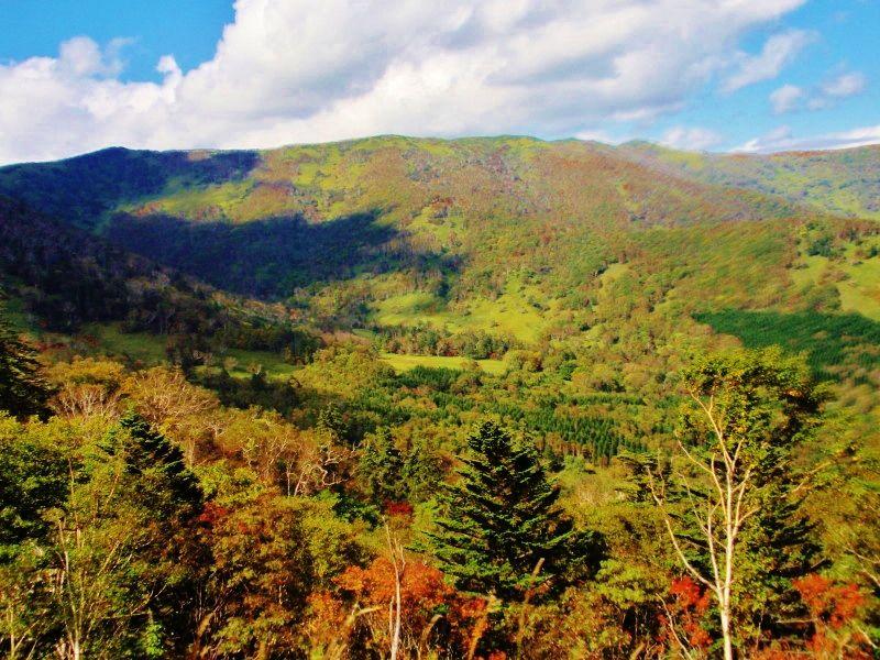 季節の色を感じる「日勝峠」の風景