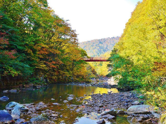 絵になる紅葉風景がいっぱい!秋の「定山渓散策路・二見公園」