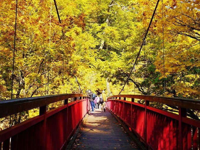 「定山渓散策路・二見公園」から歩いて紅葉の「二見吊橋」へ